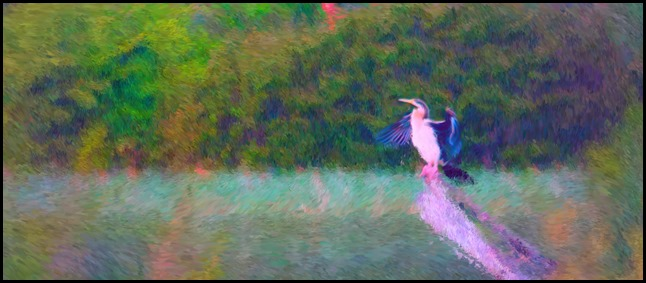 Aftershot Photo give an Impressionist Rendering