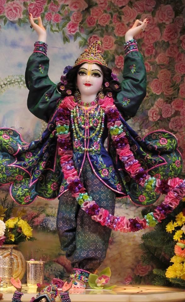 ISKCON Hungary Deity Darshan 24 Dec 2015 (2)