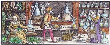 Probably By Weiditz From Otto Brunfels Herbarium Vivae Icones 1539, Alchemical And Hermetic Emblems 2