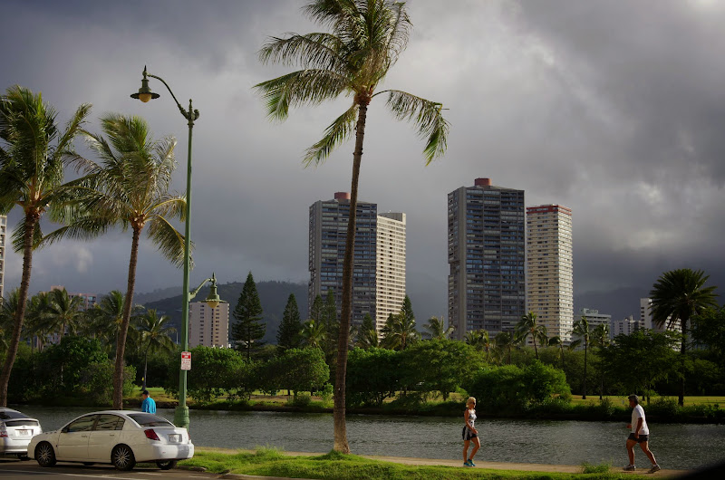 06-18-13 Waikiki, Coconut Island, Kaneohe Bay - IMGP6923.JPG
