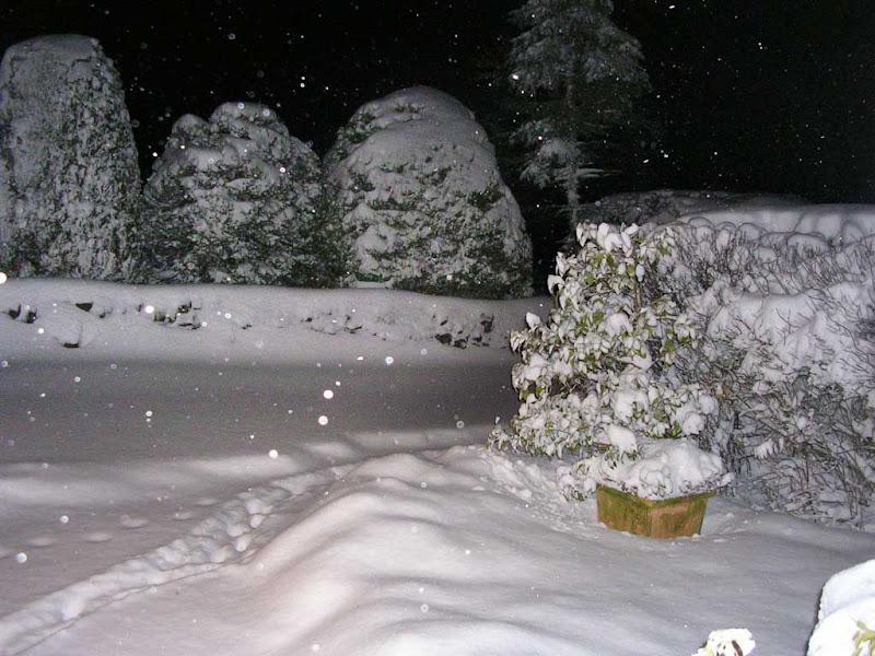 SnowKH10