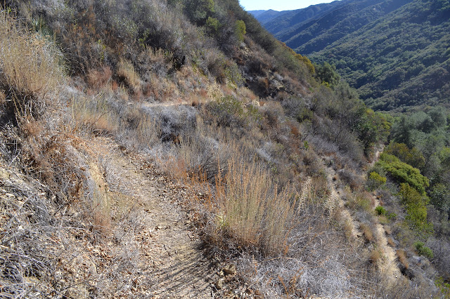 the switchbacks