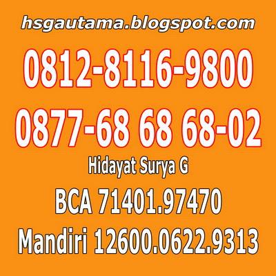 Telp-SMS-Whatsapp-XMS