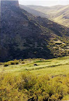 In The Andes, Argentina. That's my faithful friend Cutrui grazing out there. This is where the song believer came from.
