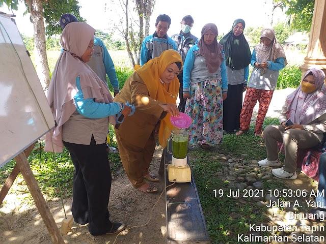 Lewat SLPHT, Petani di Binuang Terapkan Pesnab