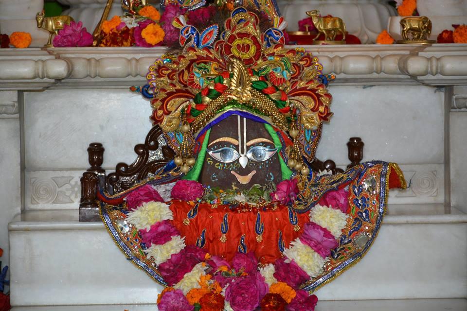 ISKCON Ujjain  Deity Darshan 22 Nov 2016 (3)