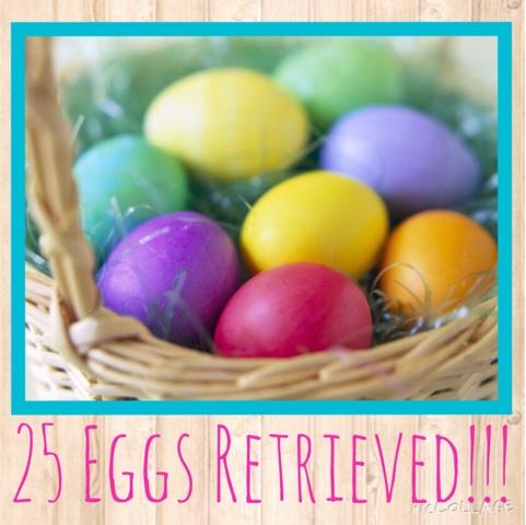 Live, Laugh, Love: Egg Retrieval Day!!!