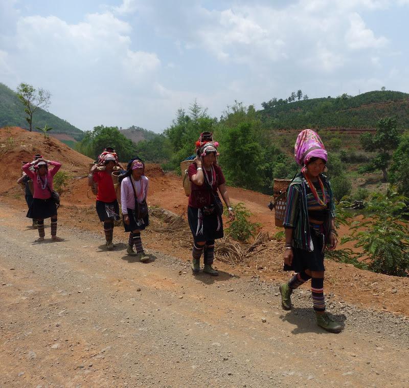 Chine .Yunnan,Menglian ,Tenchong, He shun, Chongning B - Picture%2B482.jpg