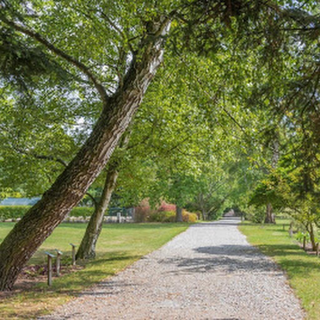 Arboretum Wirty na Kociewiu - jak wygląda po 20 latach?