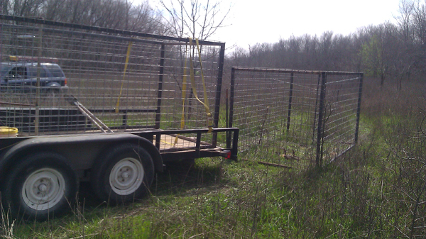 citytrapping hog trap with trailer