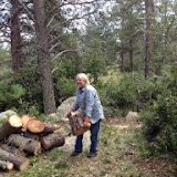 "460' of Fence Line Clearing Sept 2014: Nanci hefting the ""lumber"""
