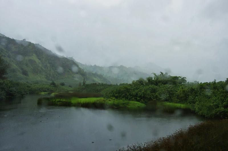 06-25-13 Annini Reef and Kauai North Shore - IMGP9294.JPG