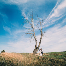 Wedding photographer Vladimir Borodenok (Borodenok). Photo of 10.11.2015