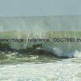 _DSC7893.thumb.jpg
