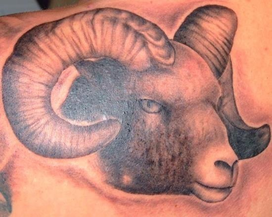 ries_ram_do_tatuagem_de_cabeça