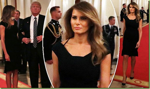 Melania-Trump-and-Donald-Trump-at-the-White-House-785196