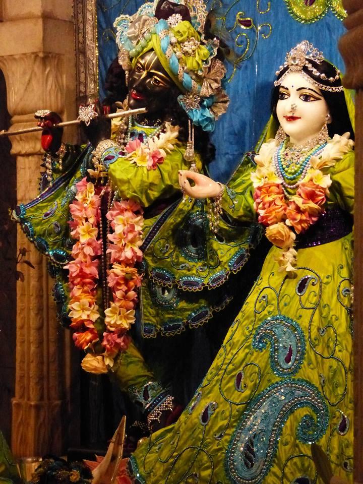 ISKCON New Govardhan Deity Darshan 01 Mar 2016 (20)
