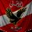 yaser amgad's profile photo