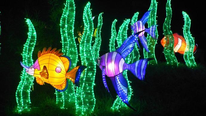 Magical Lantern Festival Birmingham Botanical Gardens