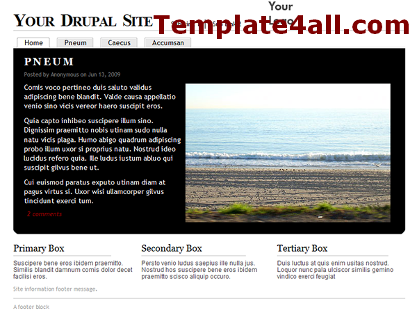 Free White Black Drupal Theme Template