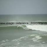 _DSC7232.thumb.jpg