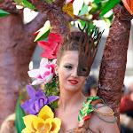 CarnavaldeNavalmoral2015_100.jpg