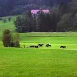 salzburg - IMAGE_7E4A2ECB-AD34-42E7-A479-A08A5FD7E83A.JPG