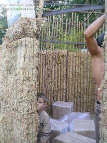 idée : construction d'un kiosque en sphaigne pour la réalisation d'un jardin botanique à la verticale