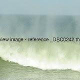 _DSC0242.thumb.jpg