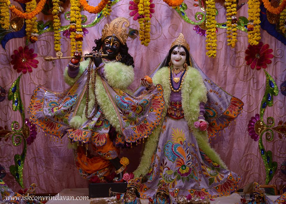 ISKCON Vrindavan Mangla Deity Darshan 16 Jan 2016  (3)