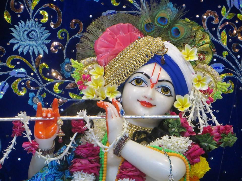 ISKCON Aravade Deity Darshan 08 Mar 2016 (4)