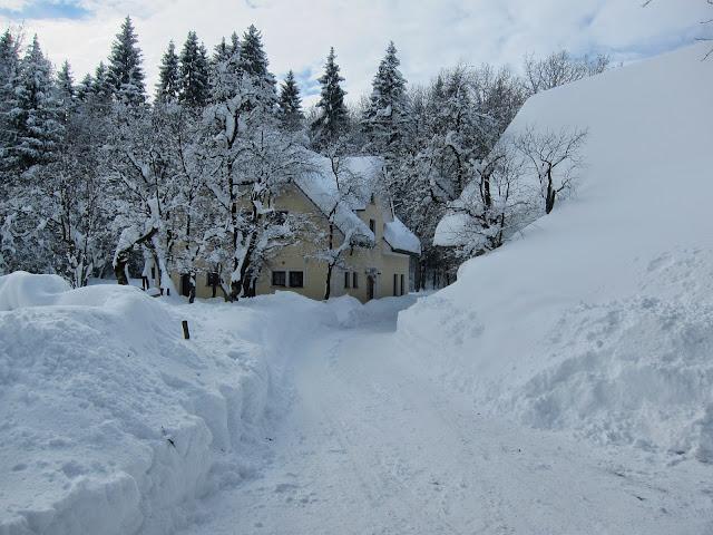 Zima-winter - IMG_4059.jpg