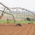 """Governo afirma que soja brasileira não """"exporta desmatamento"""""""