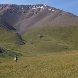 Au pied du Koksaal Alatau : Jean-François dans un biotope de Colias thisoa (3600 m), 11 juillet 2006. Photo : J.-M. Gayman