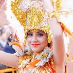 CarnavaldeNavalmoral2015_243.jpg