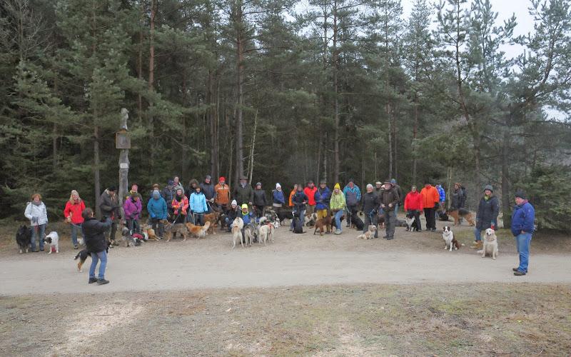 20140101 Neujahrsspaziergang im Waldnaabtal - DSC_9909.JPG