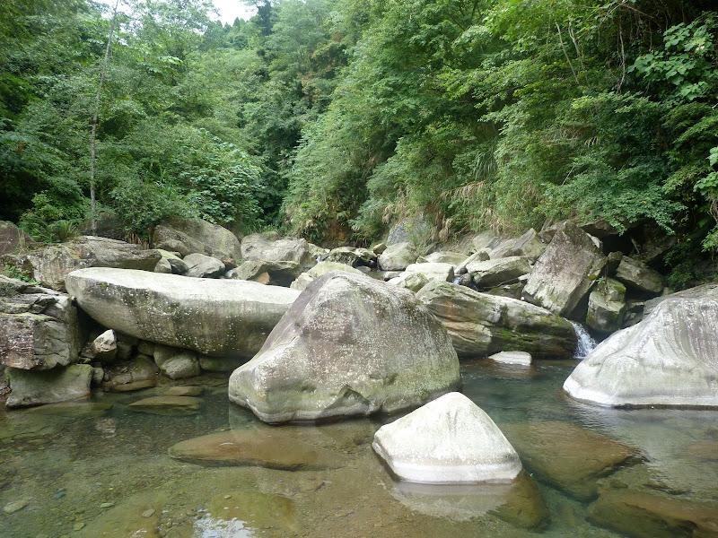 Petite randonnée au sud de Taufen, dans la région de Miaoli - P1330603.JPG