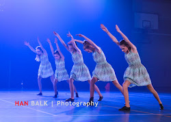 Han Balk Voorster Dansdag 2016-3102.jpg