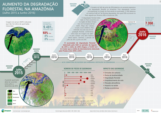 Deforestation in the Brazilian Amazon, July 2015-June 2016. Graphic: Imazon