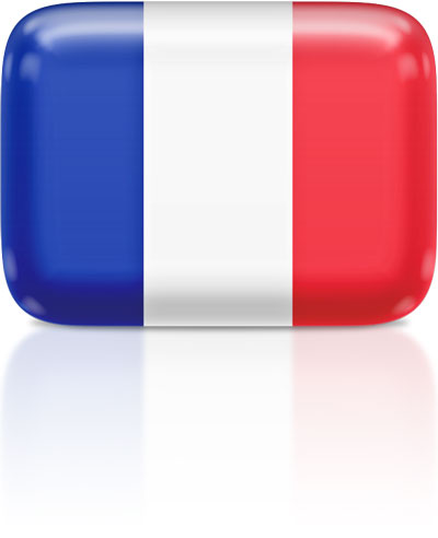 French flag clipart rectangular