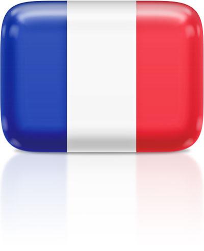French flag clipart rectangular