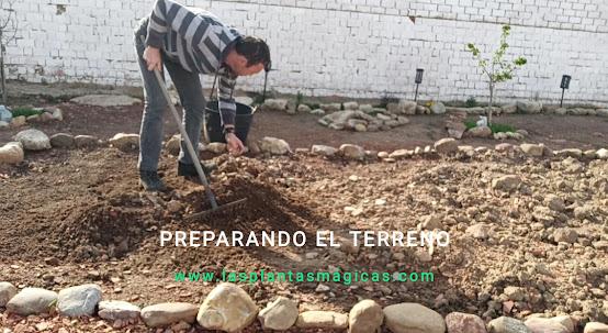 Plantas Mágicas - Labrando el terreno para trasplantar o sembrar (Video)