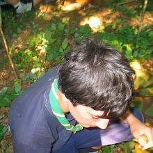Taborjenje, Lahinja 2006 1.del - IMG_4390.JPG