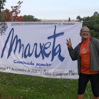 2017 11 19 Marxeta immadorda (1) - 1 de 141 (43)
