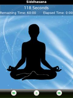 Pocket Yoga v1.4 for BlackBerry