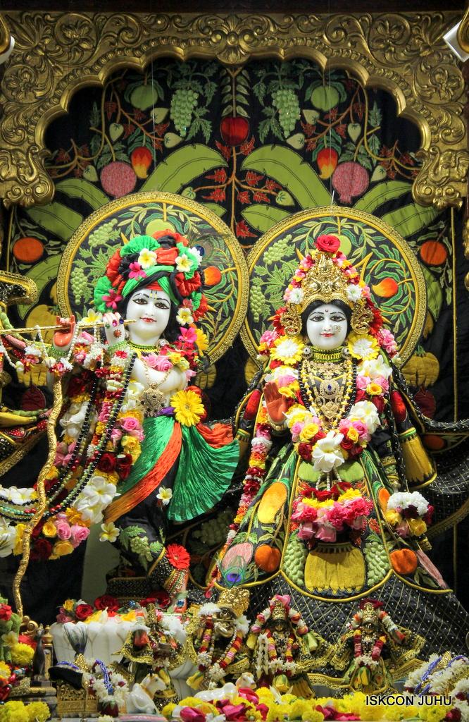 ISKCON Juhu Sringar Deity Darshan on 19th Nov 2016 (3)