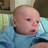 Meet Marshall! - IMG_0360.JPG