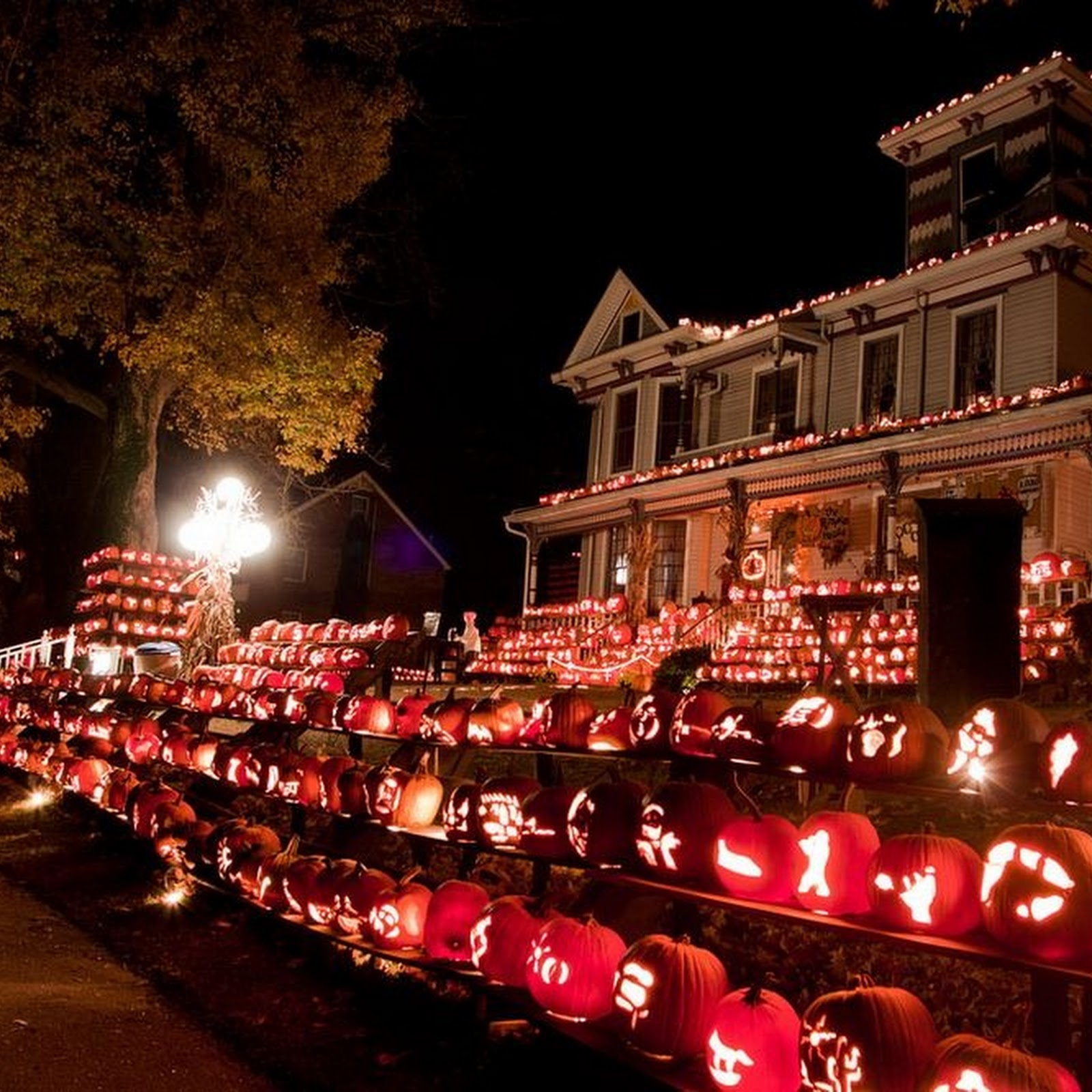 Kenova Pumpkin House