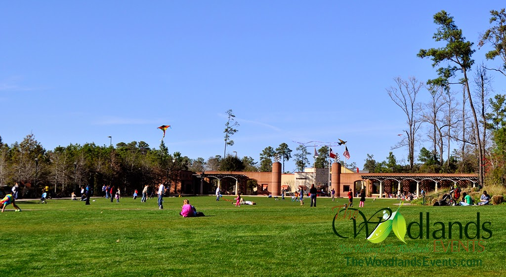 Town Green Park