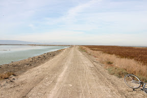 Bike trail, Alviso Slough